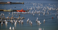 Palamos Optimist Trophy sans vent pour les Optis